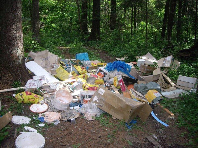 Картинки мусор в лесу