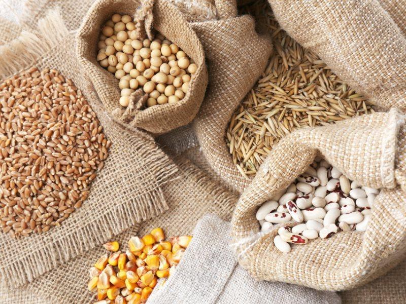 Зональный район, Алтайский край, Сайт газеты За урожай, Хранение семян