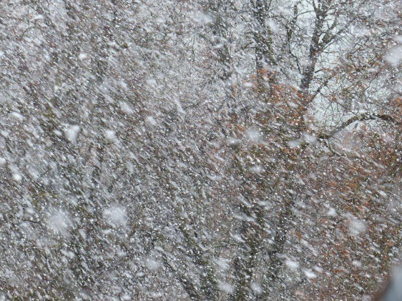 Ожидаются холодные, однако солнечные выходные— Погода вИжевске
