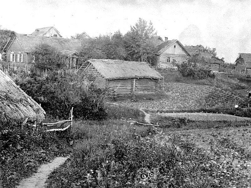 Ферму поместье в остров Янина
