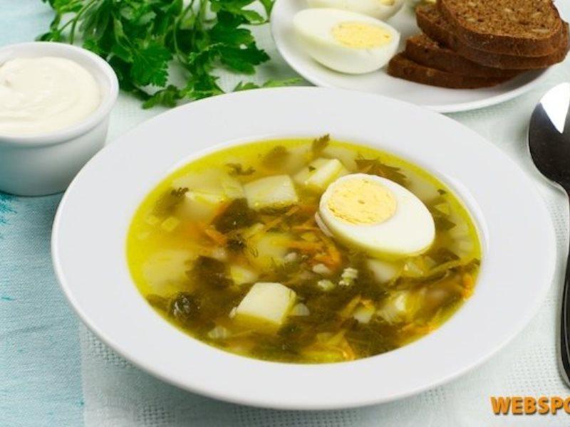 Щи из щавеля с яйцом и курицей рецепт с фото пошагово