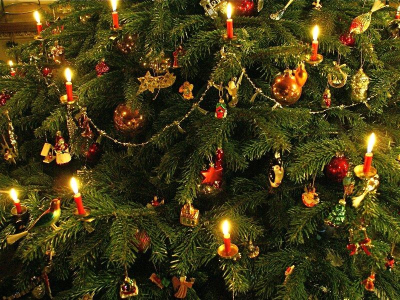 фото рождественской немецкой елки постоянно идем